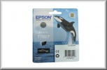 Epson Tintenpatrone T76074010 (25,9ml - light black)